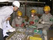 IMM Japan: Vietnamese trainees safe
