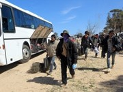 Last Vietnamese workers return home from Libya