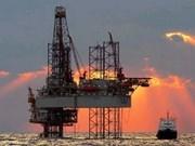 Vietnam to pump first Venezuela oil in 2012