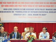 Consultations for VN's statistics strategy