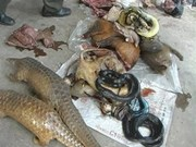 Tay Ninh, Cambodia fight wildlife trading
