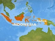 Air crash in Indonesia kills 27 persons