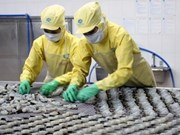 Vietnam's exports to EU surge