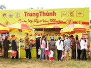 VN-China border trade fair planned for November