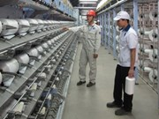 First made-in-Vietnam polyester fibre roll out