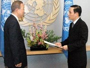 VN ambassador presents credentials to UN Chief