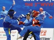 Vietnam triumphs at vovinam champs