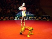 Vietnamese circus artists shine in Cuba