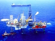 PetroVietnam eyes gas exploitation in Bolivia