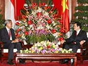 VN, Singapore agree to strengthen defence ties