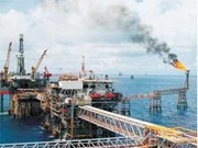 PVEP signs engineering contract with Algeria