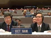 Vietnam re-elected to WIPO Coordination Committee