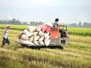 ASEAN promotes food security and trade