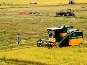 Asia aims for sustainable agricultural development