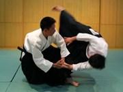 Int'l Aikido Festival opens in Hanoi