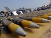 Domestic, int'l experts discuss Arms Trade Treaty process