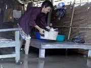 AusAID helps Vietnamese flood victims