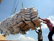 Parboiled rice exports to increase