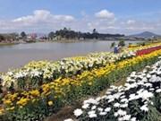 92 businesses join Da Lat flower festival