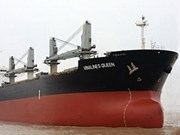 Vietnamese cargo ship sinks, one rescued