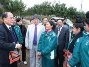 Top legislator pays Tet visit to power plant workers
