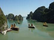 No visitor fees for Ha Long Bay during Tet