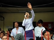 NLD party wins 43 seats in Myanmar's by-elections