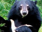 Rescue centre saves smuggled wild animals