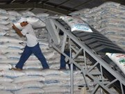 VN targets over 1.3 mln tonnes of sugar