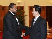 Vietnam, African countries to expand co-operation: PM