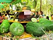 Annual fruit festival juices up HCM City
