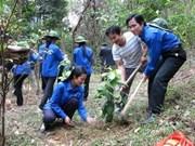Hanoi responds to World Environment Day