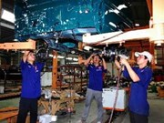 Report on industrial investment in Vietnam announced
