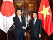 Japan pledges ODA for Vietnam at high level