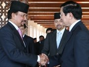 Vietnam, Brunei enhance multi-faceted cooperation