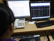 Shares go down on both exchanges