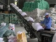 Mekong Delta rice exports up 18 percent