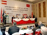 Vietnam, Austrian businesses strengthen links