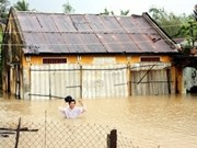 Vietnam reviews climate change investment