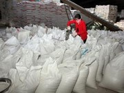 Vietnam to export 187,000 tonnes of rice to Philippines