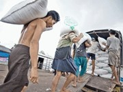Japan to buy rice from Myanmar