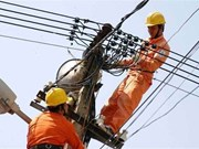 Bank powers electricity project