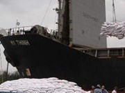 Vietnam exports 33,000 tonnes of rice to Haiti