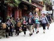 Foreign arrivals to Vietnam down