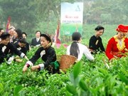Second Int'l Tea Festival planned for November