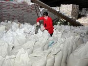 Vietnam ships 2.8 million tonnes of rice abroad
