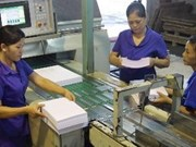 Vietnam, Thailand promote footwear cooperation
