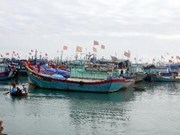 Fishery co-management takes effect in coastal localities