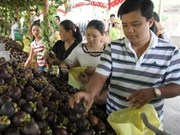 Mekong Delta expands fruit area for export