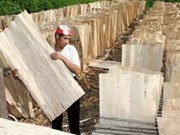 Exports of wood products rise in five months